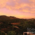 Hollywood Sign by Eclectic Captures