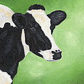 Holstein Cow by Annamarie Lombardo