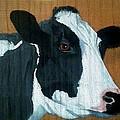 Holstein by Debbie LaFrance