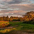 Holy Place. Karelia by Jenny Rainbow