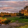 Holy Source 3. Karelia by Jenny Rainbow