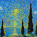 Homage To The Sun by Stefan Duncan