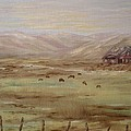 Home On The Range by Carrie Mayotte