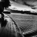 Homebound. by Renato Bartolomei