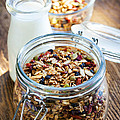 Homemade Toasted Granola by Elena Elisseeva
