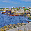 Homes Across Peggy's Cove-ns by Ruth Hager