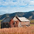 Homestead by Image Takers Photography LLC - Laura Morgan