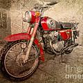 Honda Cb175 by Rob Hawkins