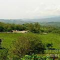 Honduran Homestead by Lew Davis