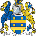 Hone Coat Of Arms Irish by Heraldry