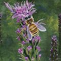 Honeybee On Liatis by Lucinda V VanVleck