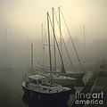 Honfleur Harbour In Fog. Calvados. Normandy by Bernard Jaubert
