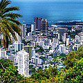 Honolulu From Mount Tantalus by Wayne Wood
