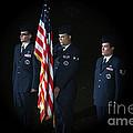Honor Guard by Karol Livote
