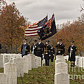 Honor Guard by Terry Rowe