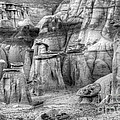 Hoodoos Bisti/de-na-zin Wilderness Monochrome by Bob Christopher