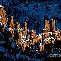 Hoodoos In Shadows Bryce Canyon National Park Utah by Jason O Watson