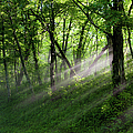 Hope Lights Eternal - Blue Ridge Parkway I by Dan Carmichael
