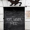 Hope Never Dies by Lorraine Devon Wilke