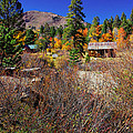 Hope Valley Fall Colors by Scott McGuire