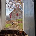 Hopewell Furnace And Pug 18 by Jack Paolini