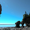 Hopewell Rocks by Cheryl Baxter