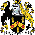 Hopkins Coat Of Arms Irish by Heraldry