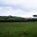 Horizon Dingle Ireland by Hugh Smith