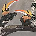 Hornbills by Ethleen Palmer