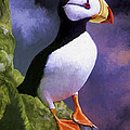 Horned Puffin by David Wagner