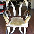 Horny Chair by John Malone