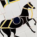 Horse-01 by Haris Sheikh