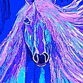 Horse Abstract Blue And Purple by Saundra Myles