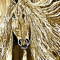 Horse Abstract Neutral by Saundra Myles