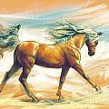 Horse Akalteke by MGL Meiklejohn Graphics Licensing