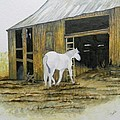Horse And Barn by Bertie Edwards