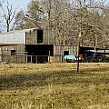 Horse And Barn by Darrell Clakley