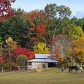 Horse And Barn In The Fall 3 by Duane McCullough