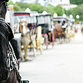 Horse And Buggy by Linda Shafer