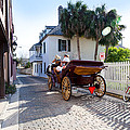 Horse And Buggy Ride St Augustine by Michelle Wiarda-Constantine