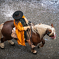 Horse And Rider From Above by Matthias Hauser