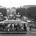 Horse And Trolley Main Street Disneyland Bw by Thomas Woolworth