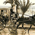 Horse Drawn Carriage Ride by David Coleman