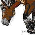 horse - Guus by Go Van Kampen