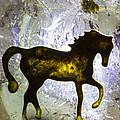 Horse On A Quartz Crystal by Robert Storost