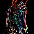 Horse On Black by Alice Gipson