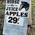 Horse Or Juice Apples by Melissa Coffield
