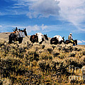 Horse Pack   #003 by J L Woody Wooden