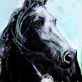 Horse Painted Black by Go Van Kampen