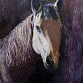 Horse Painting by Terri  Meyer